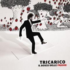 tricarico-bosco-fragole.jpg